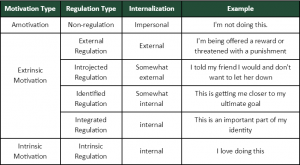 chart of types of motivation and examples